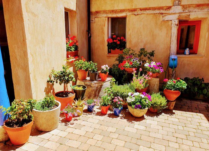 Summer has arrived in Villares de Orbigo